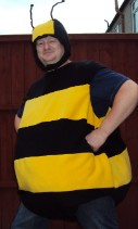 Bumble Bee fancy Dress